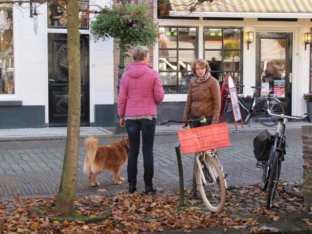Cursus gehoorzame huishond
